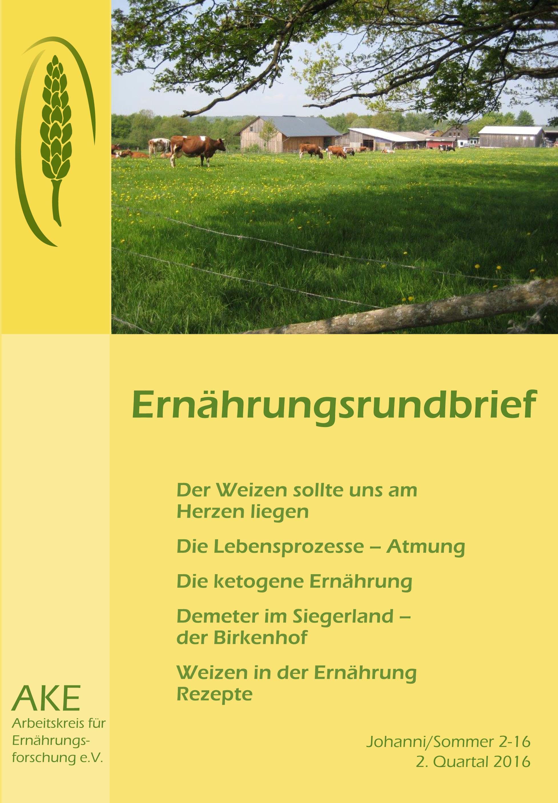 Rundbrief 2-16