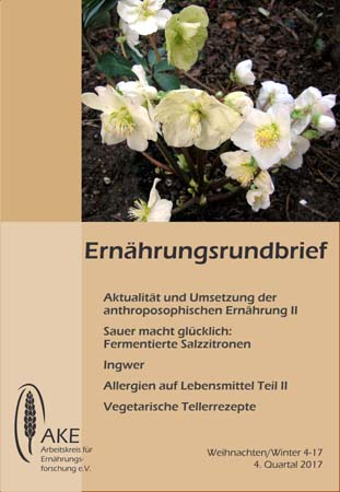 Rundbrief 4-17